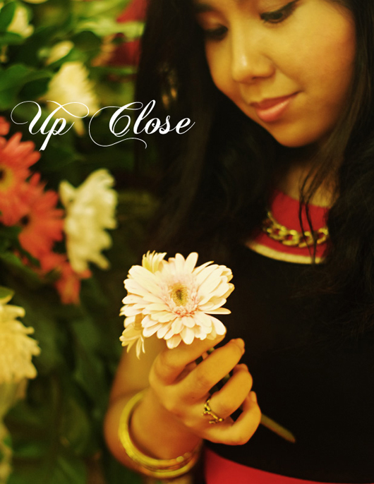 pradnya-cinantya-up-close-1