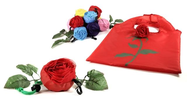 pradnya cinantya anya the fashion apprentice plastic bags diet 1